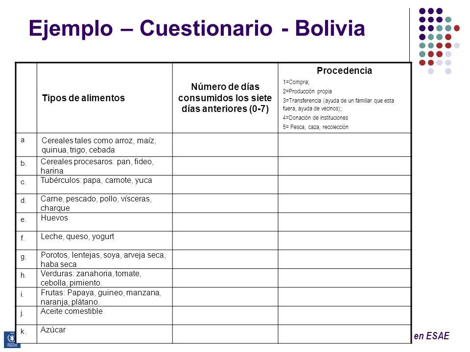 Ejemplo – Cuestionario - Bolivia