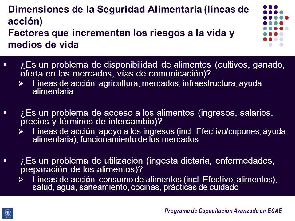 Dimensiones de la Seguridad Alimentaria (líneas de acción) Factores que incrementan los riesgos a la vida y medios de vida