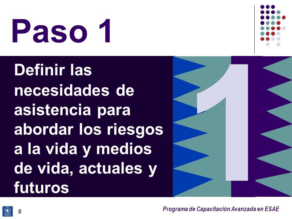 Paso 1 1. Definir las necesidades de asistencia para abordar los riesgos a la vida y medios de vida, actuales y futuros.