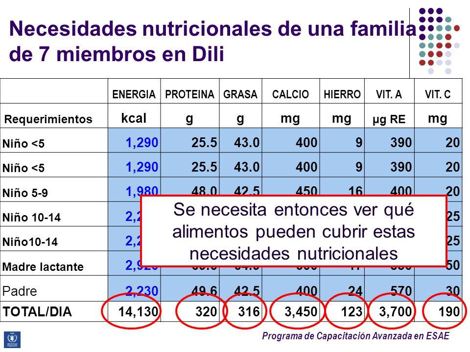 Necesidades nutricionales de una familia de 7 miembros en Dili