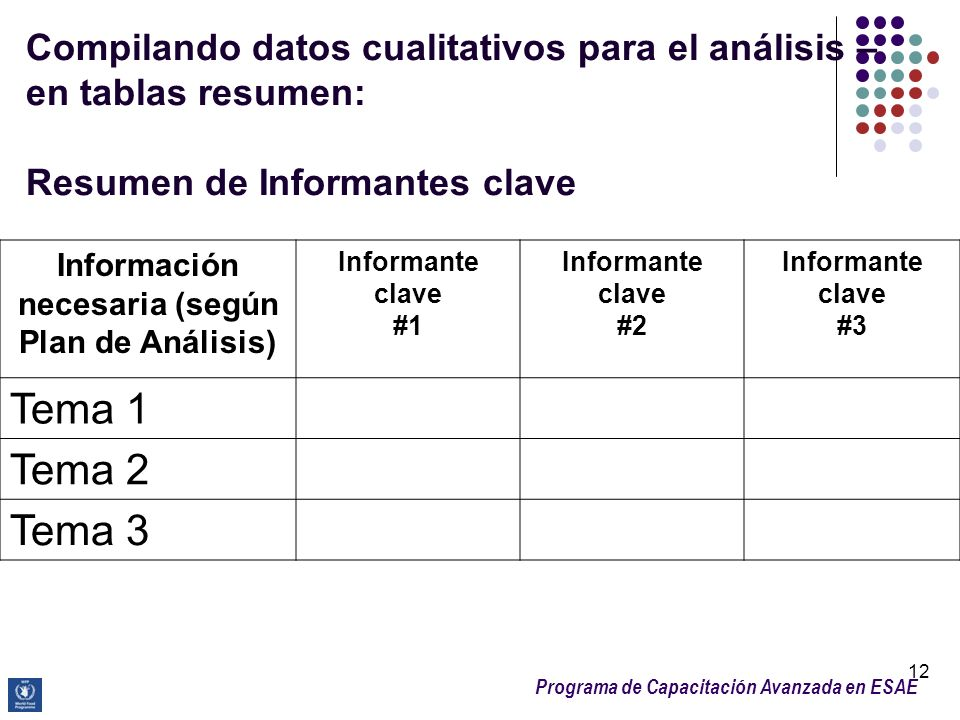 Información necesaria (según Plan de Análisis)