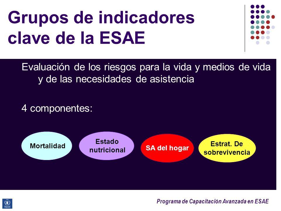 Grupos de indicadores clave de la ESAE
