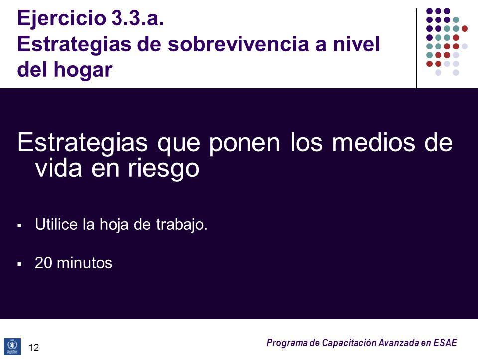 Ejercicio 3.3.a. Estrategias de sobrevivencia a nivel del hogar