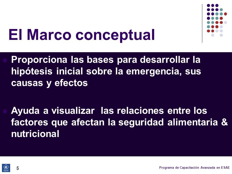 El Marco conceptualProporciona las bases para desarrollar la hipótesis inicial sobre la emergencia, sus causas y efectos.