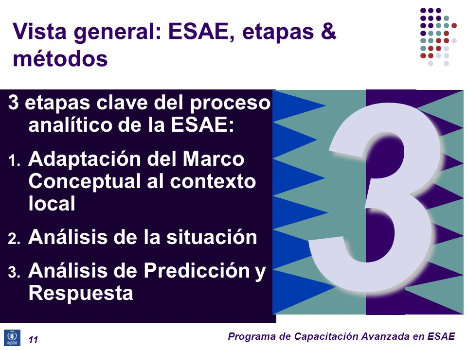 Vista general: ESAE, etapas & métodos