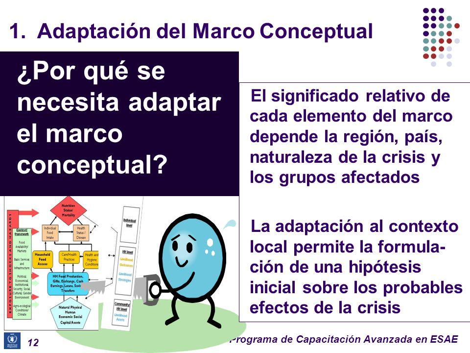 ¿Por qué se necesita adaptar el marco conceptual