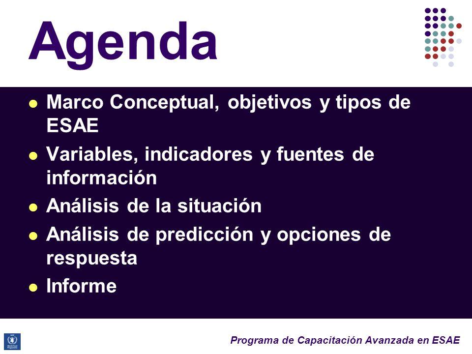 Agenda Marco Conceptual, objetivos y tipos de ESAE