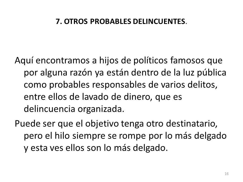 7. OTROS PROBABLES DELINCUENTES.