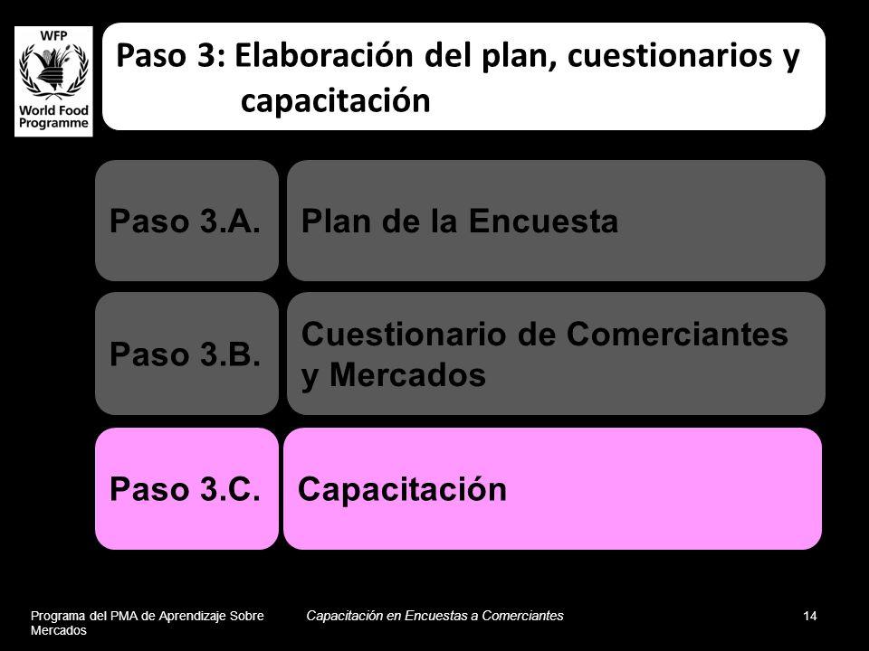 Paso 3: Elaboración del plan, cuestionarios y capacitación