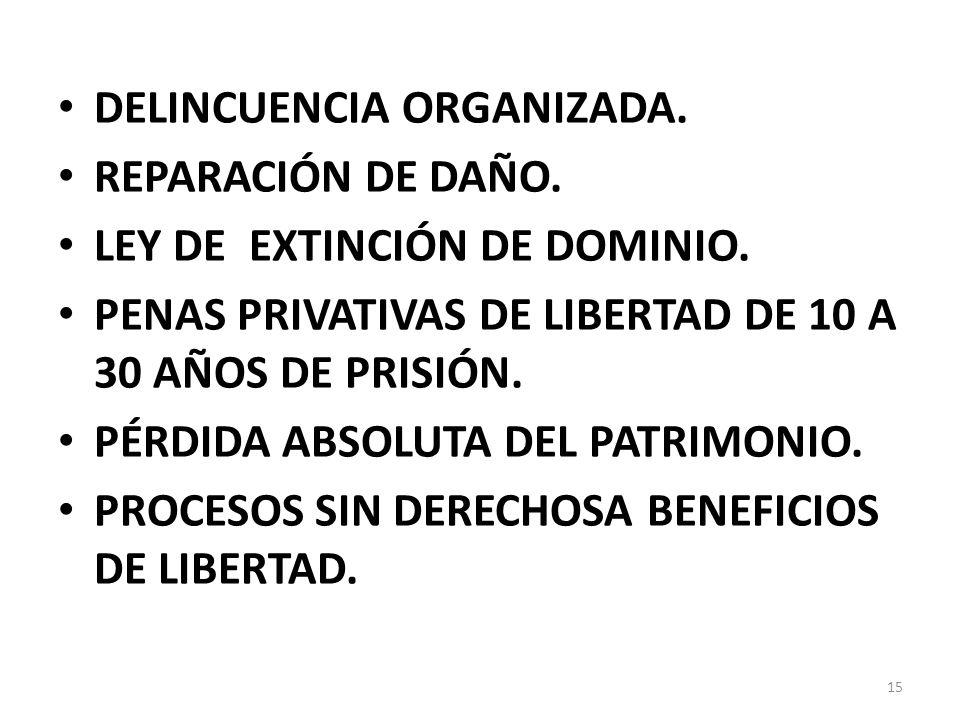 DELINCUENCIA ORGANIZADA.