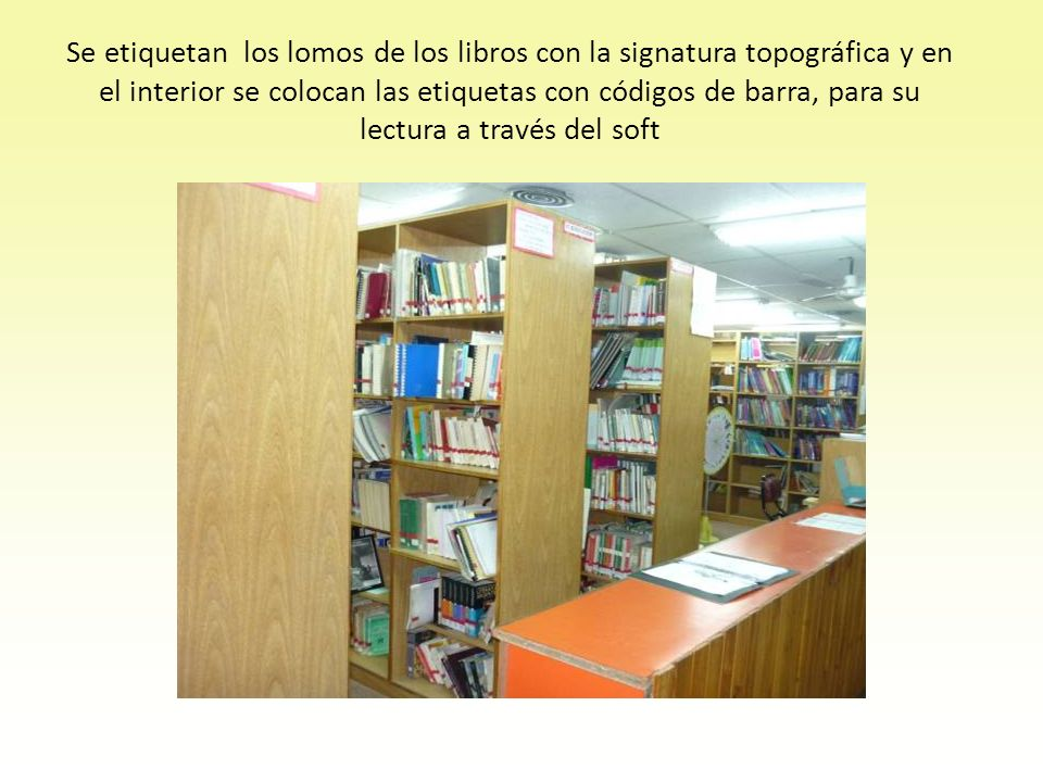 Se etiquetan los lomos de los libros con la signatura topográfica y en el interior se colocan las etiquetas con códigos de barra, para su lectura a través del soft