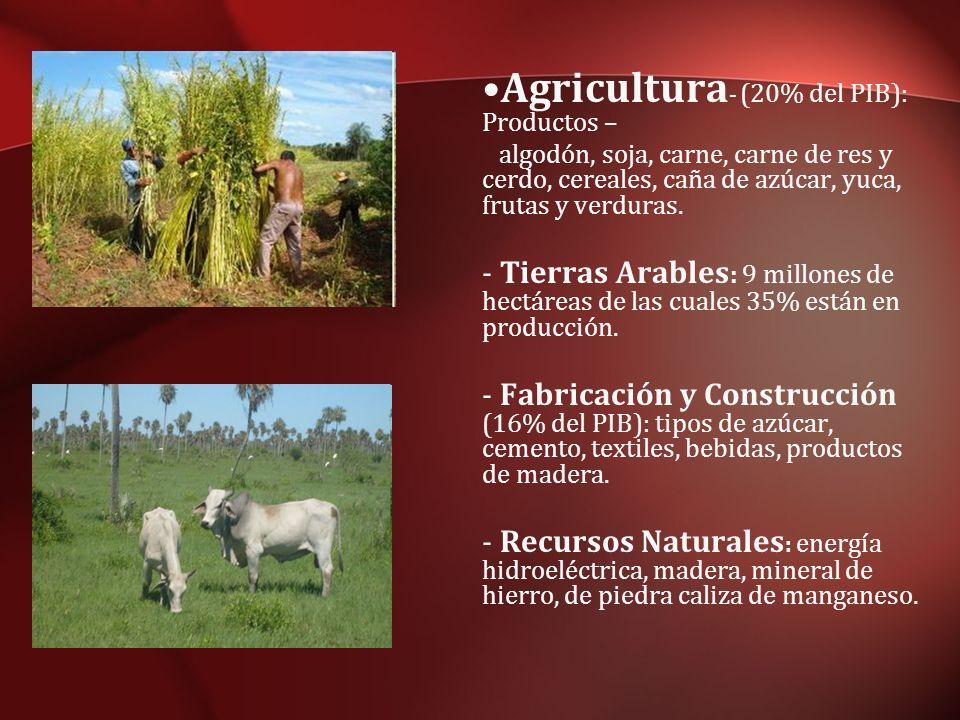 Agricultura- (20% del PIB): Productos –