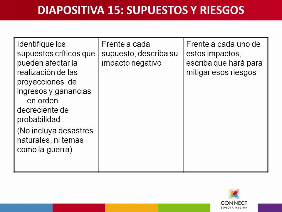 DIAPOSITIVA 15: SUPUESTOS Y RIESGOS