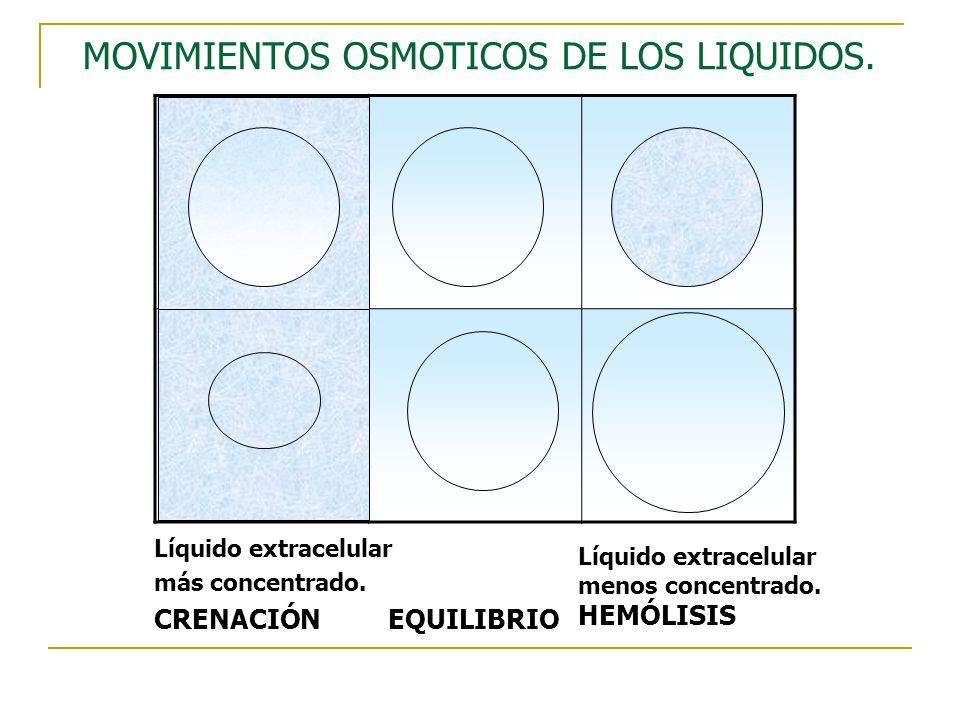 MOVIMIENTOS OSMOTICOS DE LOS LIQUIDOS.
