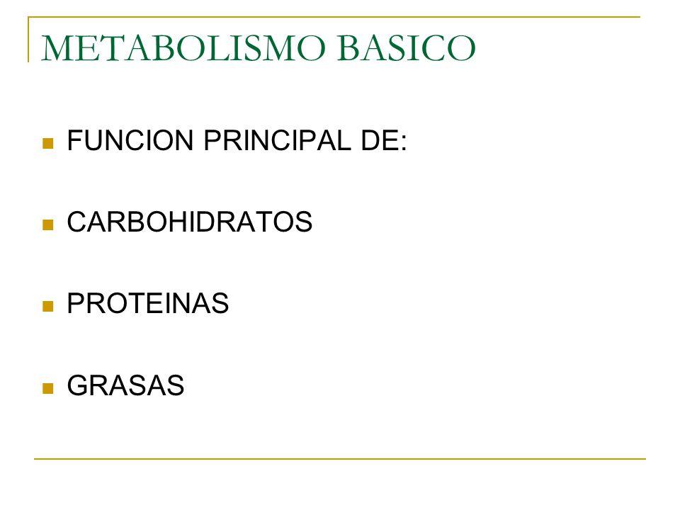 METABOLISMO BASICO FUNCION PRINCIPAL DE: CARBOHIDRATOS PROTEINAS