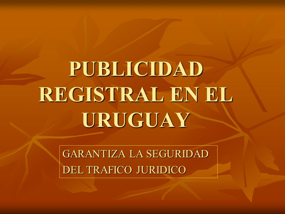 PUBLICIDAD REGISTRAL EN EL URUGUAY