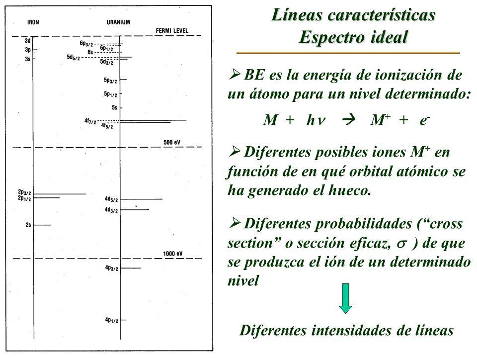 Líneas características