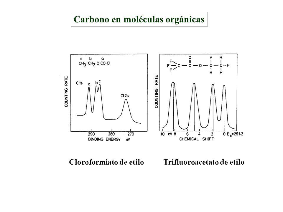 Carbono en moléculas orgánicas