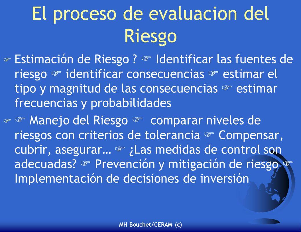 El proceso de evaluacion del Riesgo