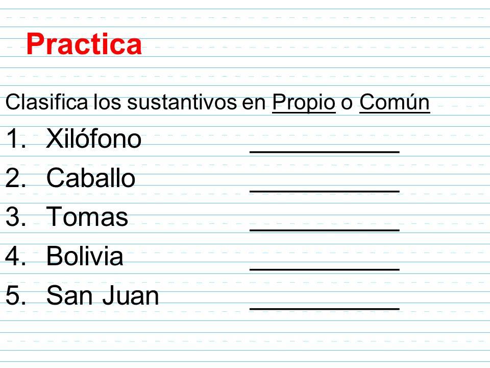 Practica Xilófono __________ Caballo __________ Tomas __________