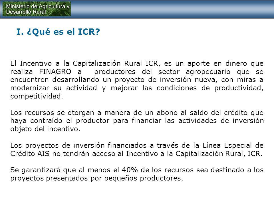 I. ¿Qué es el ICR