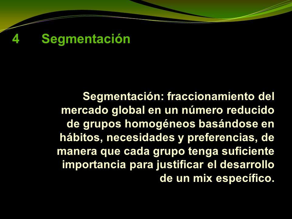 4 Segmentación