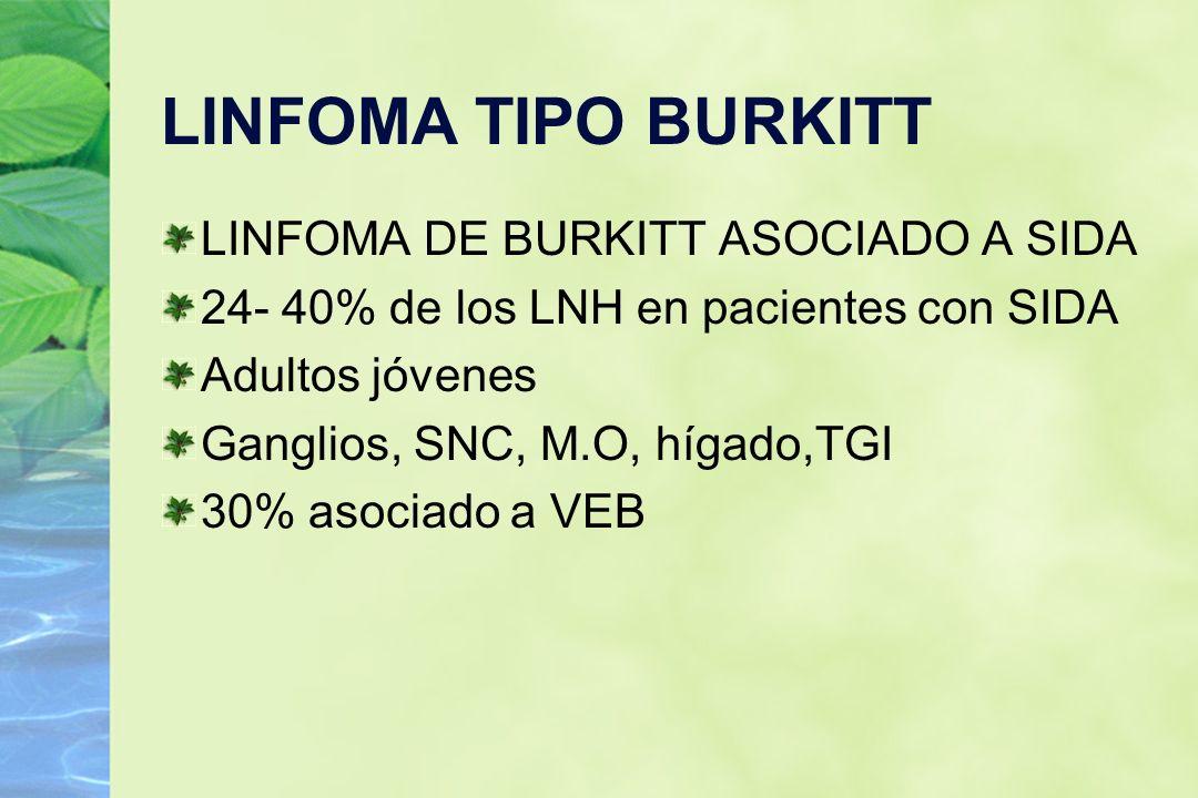 LINFOMA TIPO BURKITT LINFOMA DE BURKITT ASOCIADO A SIDA