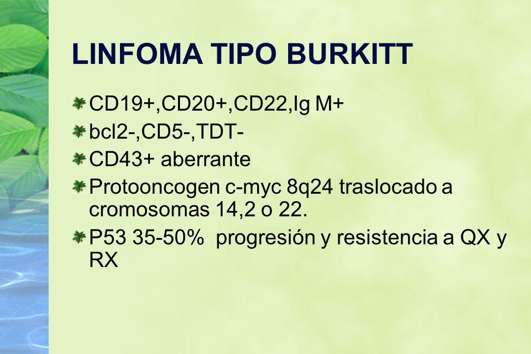 LINFOMA TIPO BURKITT CD19+,CD20+,CD22,Ig M+ bcl2-,CD5-,TDT-