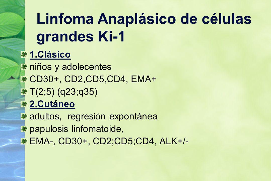 Linfoma Anaplásico de células grandes Ki-1