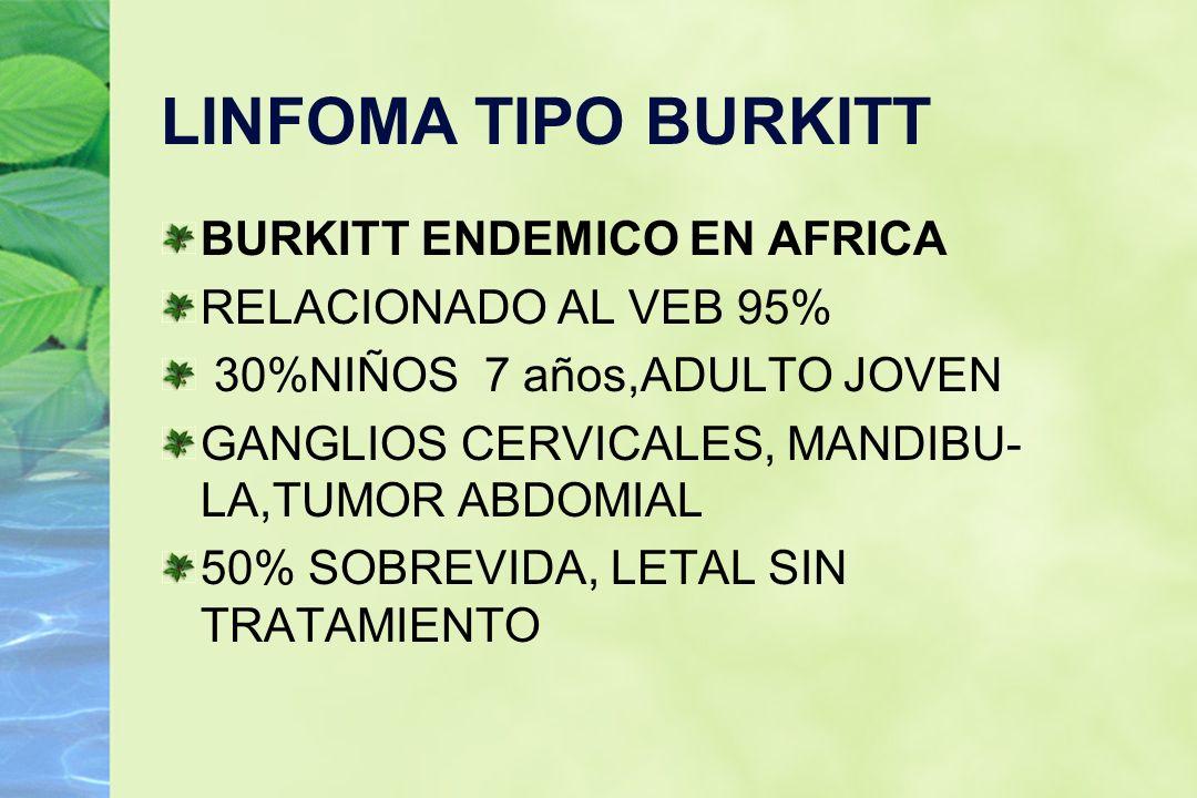 LINFOMA TIPO BURKITT BURKITT ENDEMICO EN AFRICA RELACIONADO AL VEB 95%