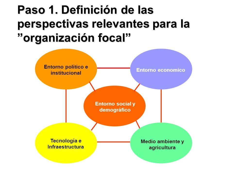 Paso 1. Definición de las perspectivas relevantes para la organización focal