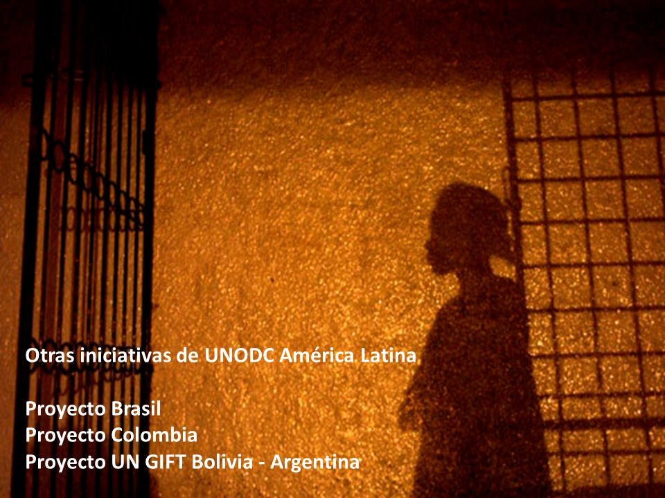 Otras iniciativas de UNODC América Latina