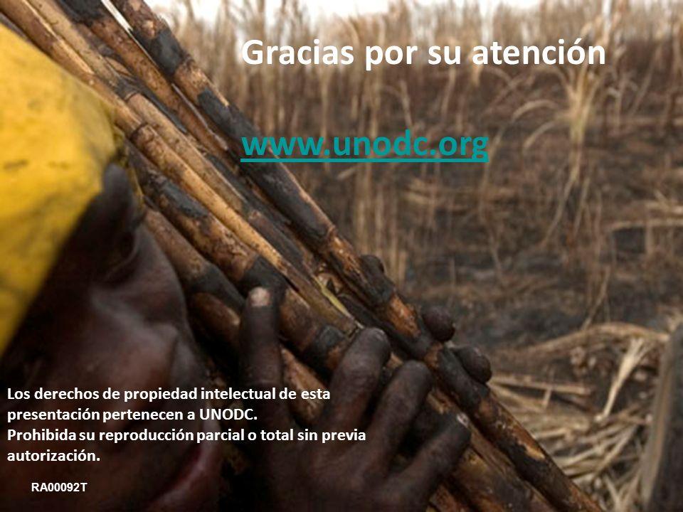 Gracias por su atención www.unodc.org