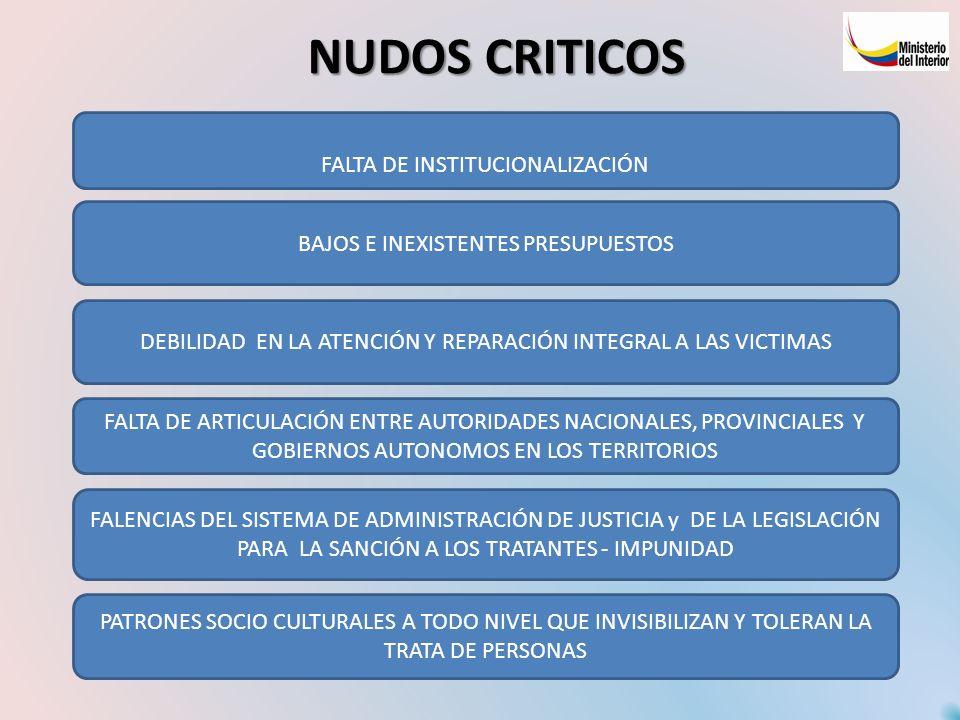 NUDOS CRITICOS FALTA DE INSTITUCIONALIZACIÓN