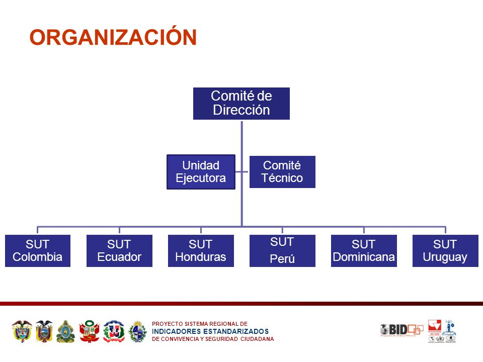 ORGANIZACIÓN Comité de Dirección Unidad Ejecutora Comité Técnico