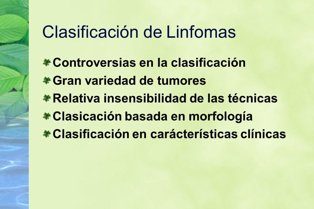Clasificación de Linfomas