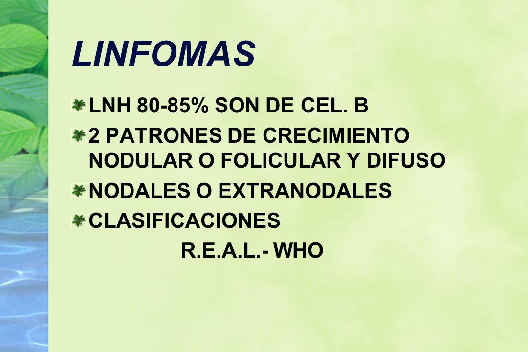 LINFOMAS LNH 80-85% SON DE CEL. B