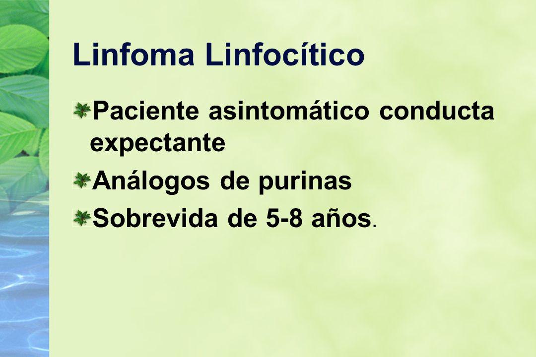 Linfoma Linfocítico Paciente asintomático conducta expectante