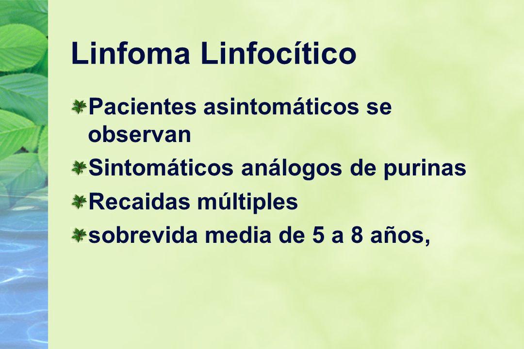 Linfoma Linfocítico Pacientes asintomáticos se observan