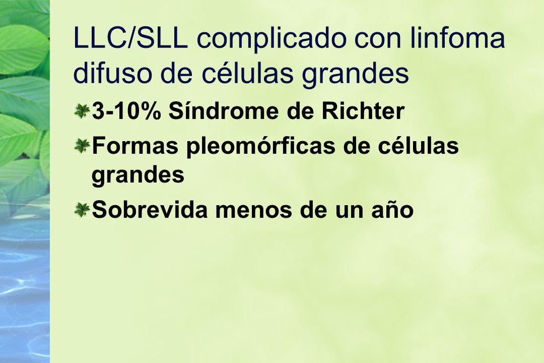 LLC/SLL complicado con linfoma difuso de células grandes