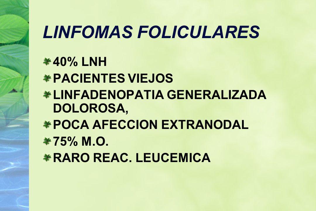 LINFOMAS FOLICULARES 40% LNH PACIENTES VIEJOS