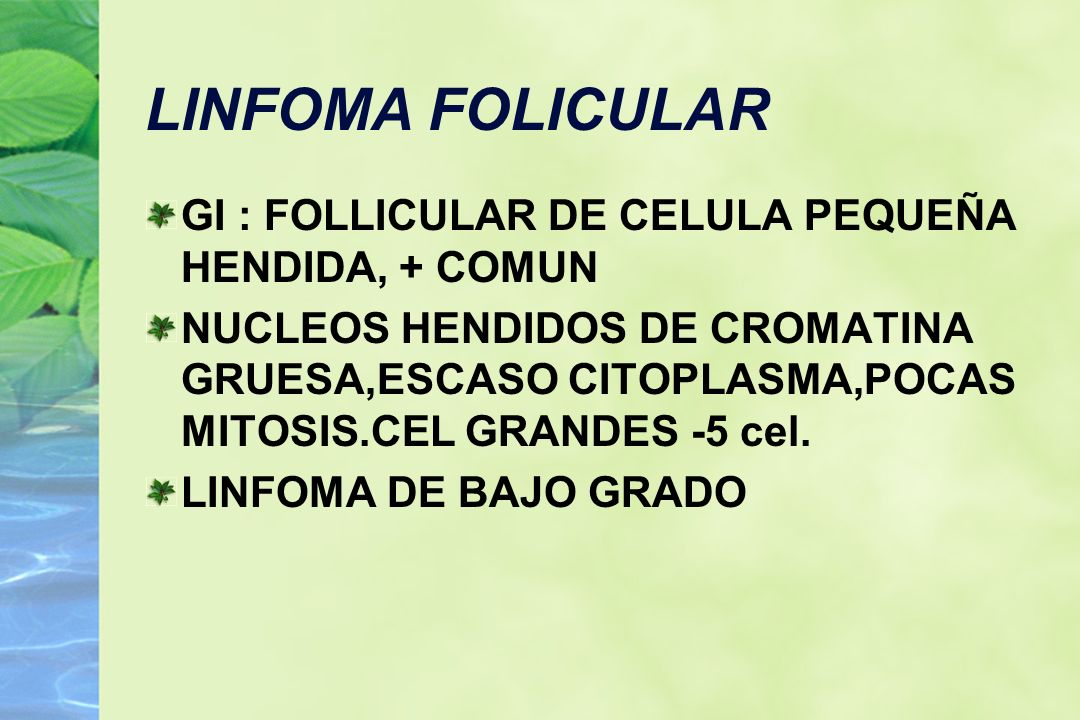 LINFOMA FOLICULAR GI : FOLLICULAR DE CELULA PEQUEÑA HENDIDA, + COMUN