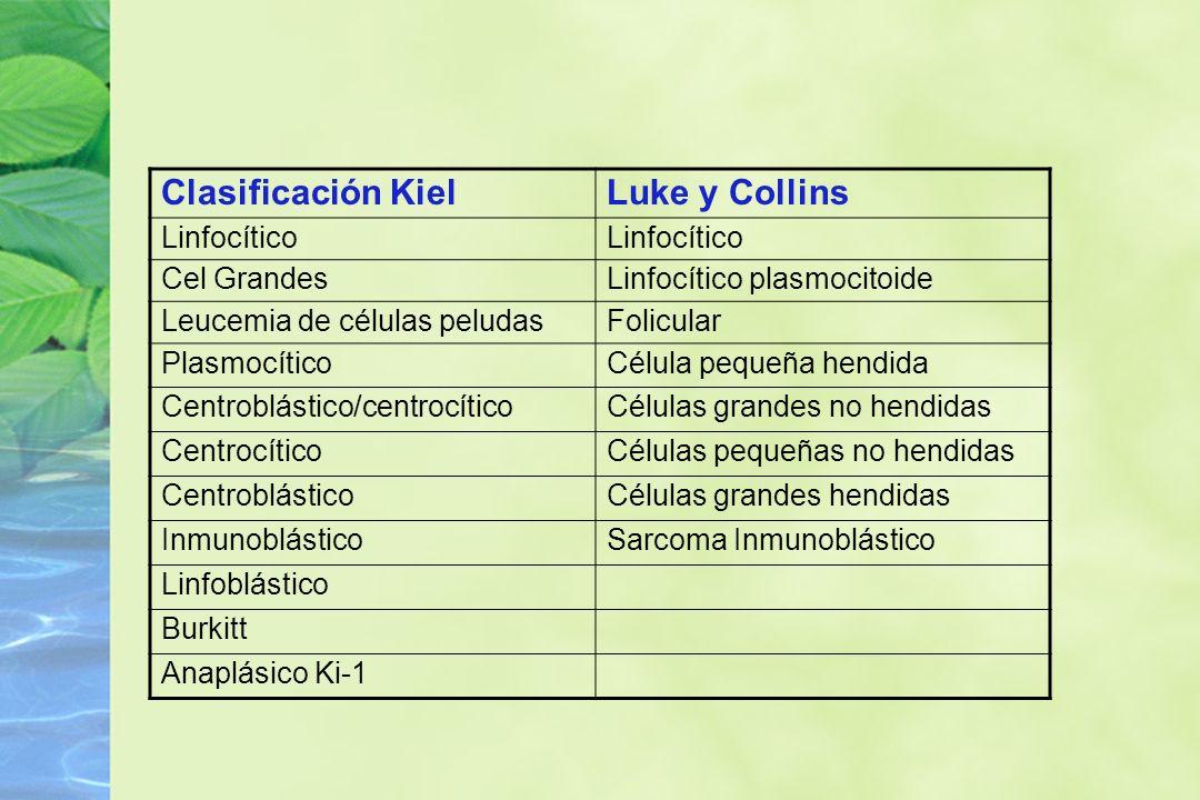 Clasificación Kiel Luke y Collins Linfocítico Cel Grandes