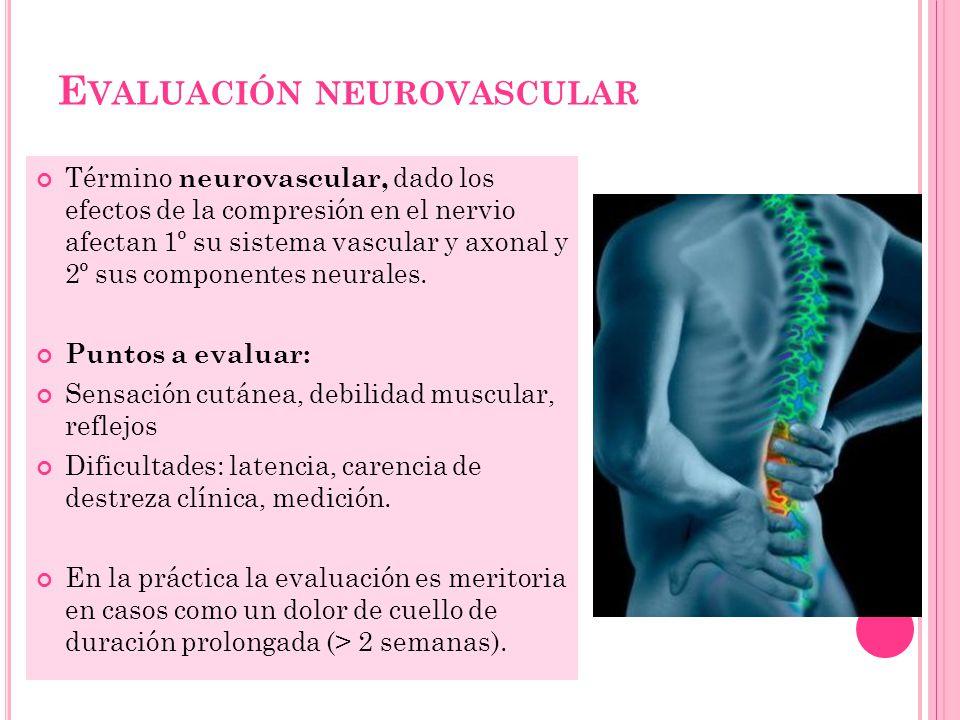 Evaluación neurovascular