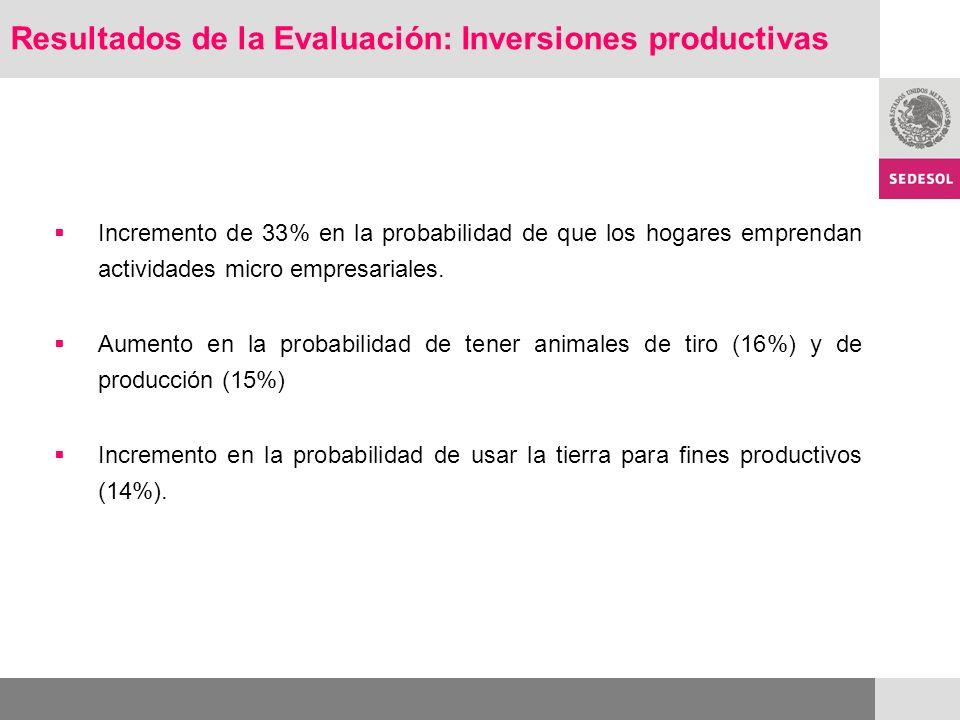 Resultados de la Evaluación: Inversiones productivas