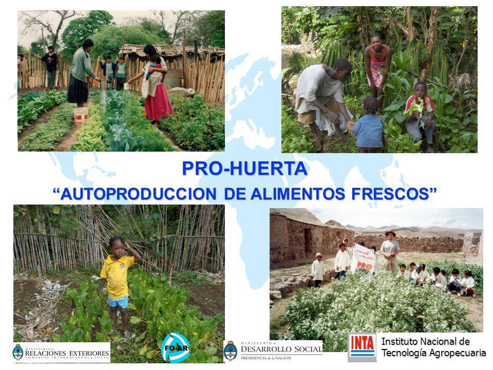 AUTOPRODUCCION DE ALIMENTOS FRESCOS