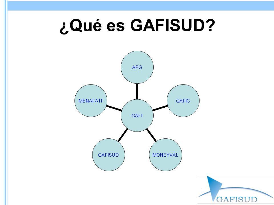 ¿Qué es GAFISUD