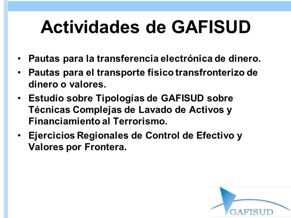 Actividades de GAFISUD