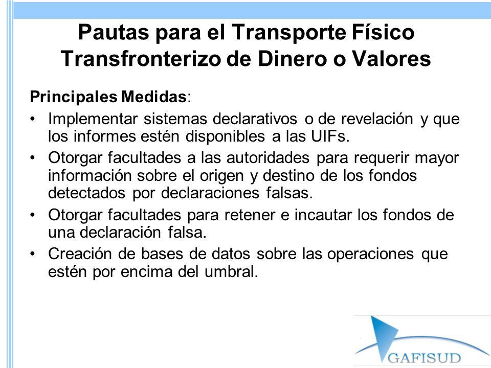 Pautas para el Transporte Físico Transfronterizo de Dinero o Valores