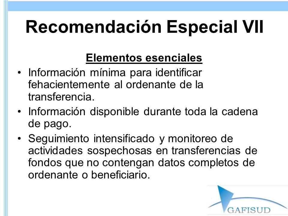 Recomendación Especial VII